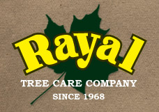 Rayal Tree Care Company
